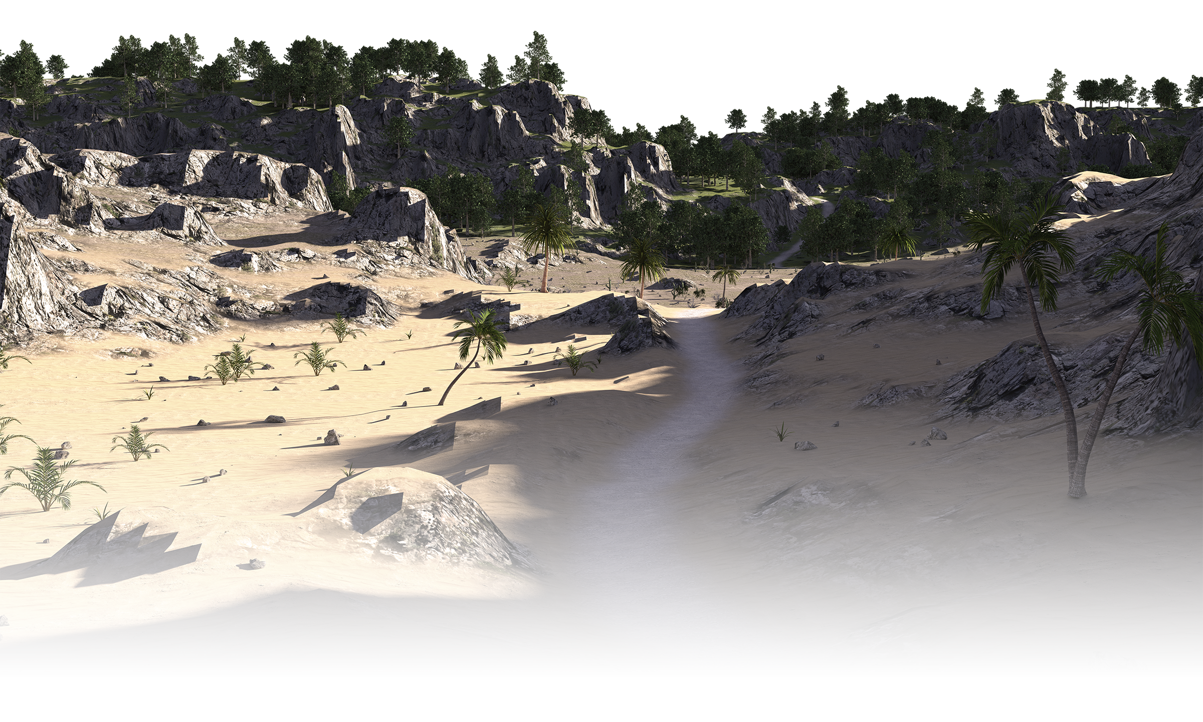Background image of a desert leading into a forest