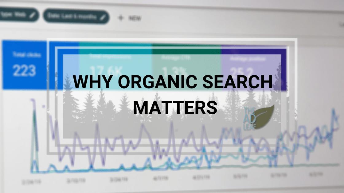 organic seo search rankings