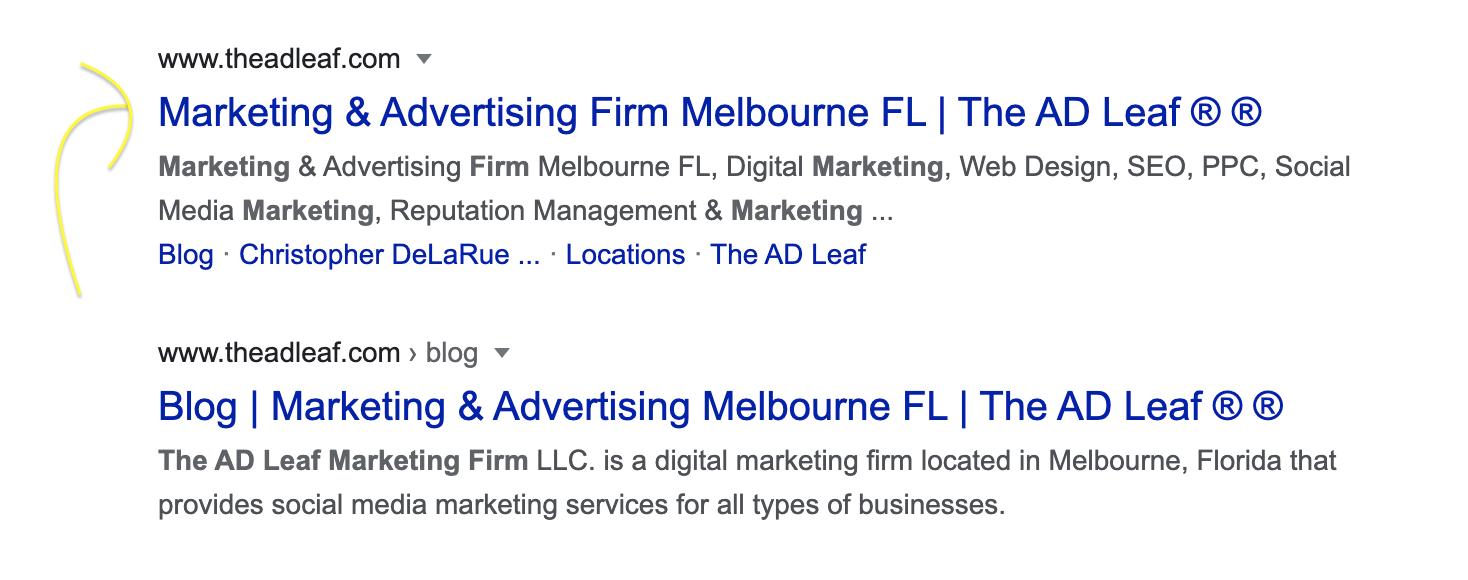 the-ad-leaf-google-marketing